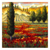 Tuscany in Bloom II Prints by J.m. Steele