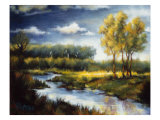 Stream and Field I Giclee Print by J.m. Steele