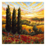 Tuscany in Bloom IV Giclee Print