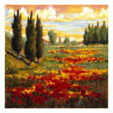 Tuscany in Bloom I Giclee Print by J.m. Steele