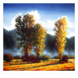 Autumn Morning I Giclee Print by J.m. Steele