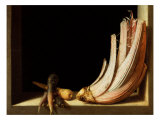 Still Life with Cardoon and Parsnips, 1604 Giclee Print by Juan Sanchez Cotan
