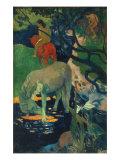 The White Horse Stampa giclée di Paul Gauguin
