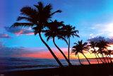 Sunrise St. Croix Posters