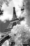 Parc du Champ de Mars, Paris Posters