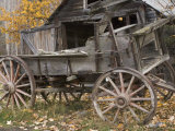 Abandoned Wagon Used for Mining in Mccarthy, Alaska Photographic Print by Michael S. Quinton