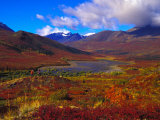 Hikers in a Valley Blooming with Autumn Colors, Tombstone Territorial Park, Yukon Territory, Canada Photographic Print by Nick Norman