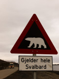 Polar Bear Crossing Sign in Svalbard, Norway, Svalbard, Norway Photographic Print by Norbert Rosing