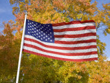 Old Glory Unfurls Against Autumn Colors, Waldorf, Maryland Photographic Print by Stephen St. John