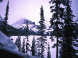 Scenic of Crater Lake Through Trees, Crater Lake National Park, Oregon Photographic Print by Nick Norman