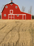 Wheat Fields and a Red Barn, Saskatchewan, Canada Fotografiskt tryck av Pete Ryan
