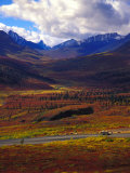 Landscape of Mountains and Wildflowers, Tombstone Territorial Park, Yukon Canada Photographic Print by Nick Norman