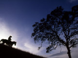 Silhouette of Cowboy, Picabo, Idaho Photographic Print by Kate Thompson