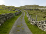 Country Road Lined with Stone Walls, Inishturk Island, County Mayo, Ireland Fotografiskt tryck av Pete Ryan