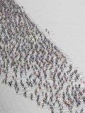 Cross Country Ski Marathon, St. Moritz, Switzerland Reproduction photographique par Melissa Farlow