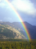 Rainbow over Forest, Alaska Photographic Print by Nick Norman