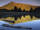 Sunlight on Francisco Peaks and Reflections, Lockett Meadow, Flagstaff, Arizona Photographic Print by David Edwards