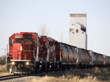 Head on View of a Freight Train, Saskatchewan, Canada Valokuvavedos tekijänä Pete Ryan