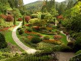 Sunken Garden at Butchart Gardnes, Victoria, British Columbia Photographic Print by Darlyne A. Murawski