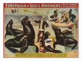 Forepaugh and Sella Brothers, Poster, 1900 Giclee Print