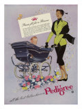 Pedigree, Magazine Advertisement, UK, 1952 Giclee Print