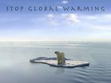 Stop Global Warming Fotografisk trykk