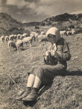 Young Shepherd Girl Sitting in a Field Fotoprint van Ludovico Pacho