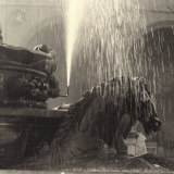 Horse, Detail of the Neptune Fountain, Piazza Della Signoria, Florence Photographic Print by Vincenzo Balocchi