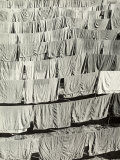 Laundry Hung in the Sun, the Sheets are Arranged in Regular Rows Photographic Print by Vincenzo Balocchi