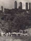 St. Gimignano Photographic Print by Vincenzo Balocchi
