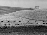 Hill and Farm-House Photographic Print by Vincenzo Balocchi