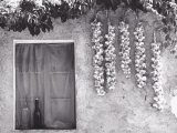 Garlic Hung Outside of a House Photographic Print by Vincenzo Balocchi
