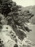 S. Margherita Ligure Links with Portofino, Near the Locality of Parraggi Photographic Print by Vincenzo Balocchi