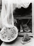 Watermelon Photographic Print by Vincenzo Balocchi