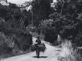 Man on Mule on a Country Road Photographic Print by Vincenzo Balocchi