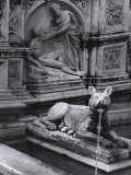 Creation of Adam, Detail from the Gaia Fountain, Piazza Del Campo, Siena Photographic Print by Vincenzo Balocchi