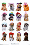 Puppies with Hats Poster by Keith Kimberlin