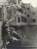 Ponte Vecchio, Florence Photographic Print by Vincenzo Balocchi