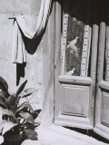 Glass Door with Curtains Photographic Print by Vincenzo Balocchi