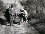 Farmer with a Wagon Pulled by Oxen Photographic Print by Vincenzo Balocchi