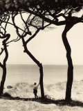 Man Leaning on the Trunk of a Pine Tree on the Seashore Photographic Print by Vincenzo Balocchi