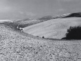 Tractors at Work in the Fields Photographic Print by Vincenzo Balocchi