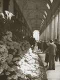 Flower Show under the Portico of Piazza Della Repubblica in Florence Photographic Print by Vincenzo Balocchi