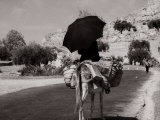 Pack Mule on a Street in the Hills Photographic Print by Vincenzo Balocchi