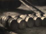 Row of Casks in a Cellar Photographic Print by Ludovico Pacho