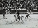 Man on a Horse Greets the Audience in the Rows of the Arena at a Bullfight Photographic Print by Vincenzo Balocchi