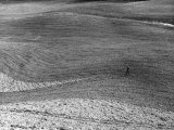 Red Soil Photographic Print by Vincenzo Balocchi