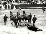 Men Descend into the Arena to Carry Away the Murdered Bull, after a Bullfight Photographic Print by Vincenzo Balocchi