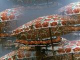 Big Umbrellas Photographic Print by Vincenzo Balocchi