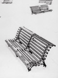 Benches in a Public Garden Covered in Snow Photographic Print by Luciano Ferri